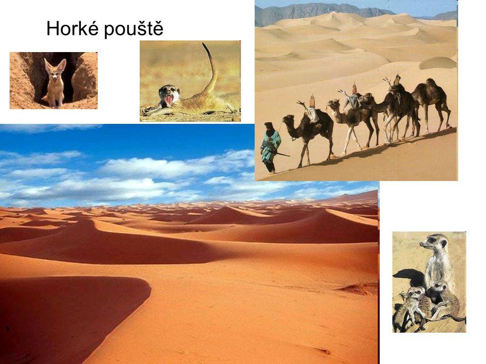 Horké pouště