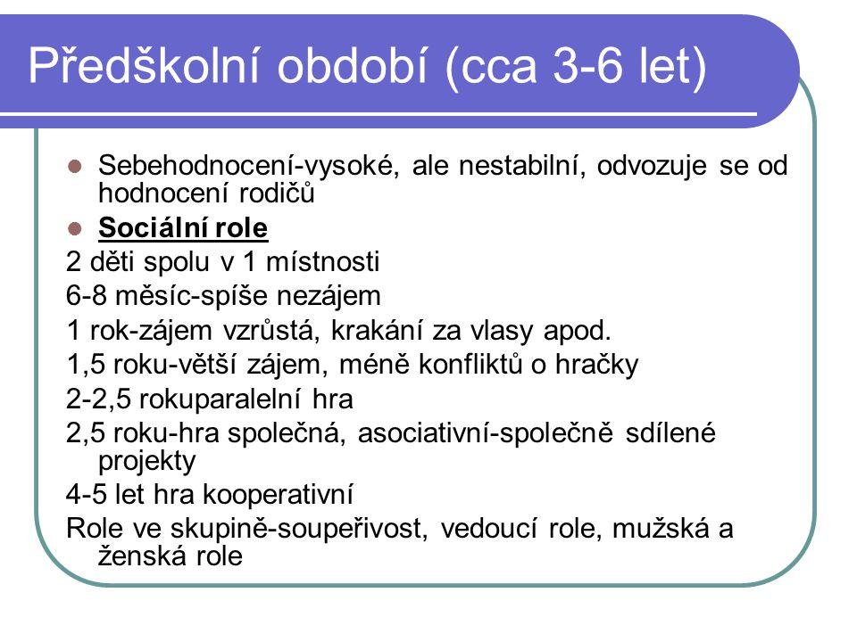 Předškolní období (cca 3-6 let)  Sebehodnocení-vysoké, ale nestabilní, odvozuje se od hodnocení rodičů  Sociální role 2 děti spolu v 1 místnosti 6-8