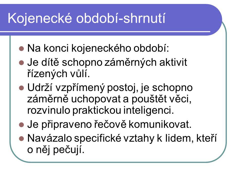 Batolecí období - 2.a 3. rok života  Řeč – na konci 1.
