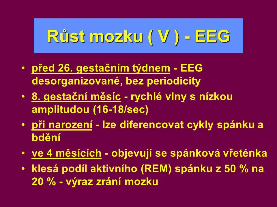 Růst mozku ( V ) - EEG •před 26. gestačním týdnem - EEG desorganizované, bez periodicity •8. gestační měsíc - rychlé vlny s nízkou amplitudou (16-18/s
