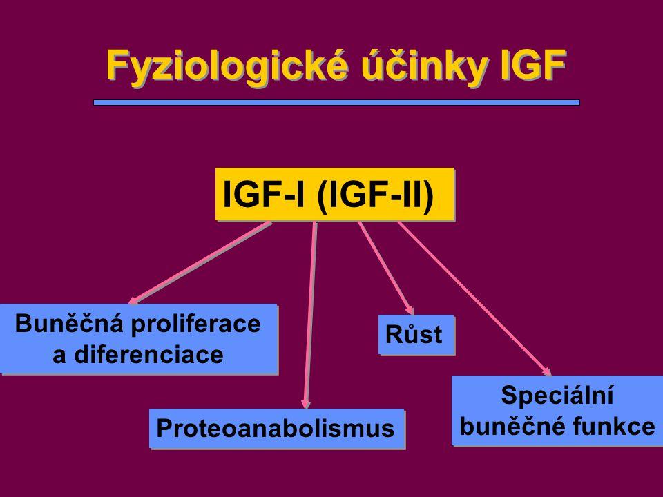 Fyziologické účinky IGF IGF-I (IGF-II) Buněčná proliferace a diferenciace Buněčná proliferace a diferenciace Proteoanabolismus Růst Speciální buněčné