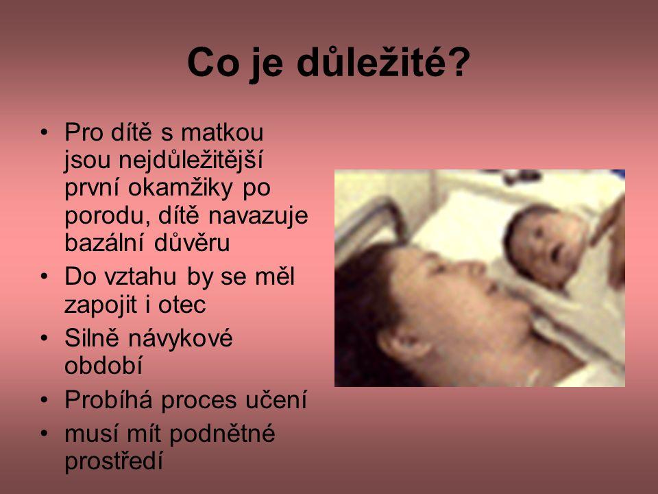 Co je důležité? •Pro dítě s matkou jsou nejdůležitější první okamžiky po porodu, dítě navazuje bazální důvěru •Do vztahu by se měl zapojit i otec •Sil