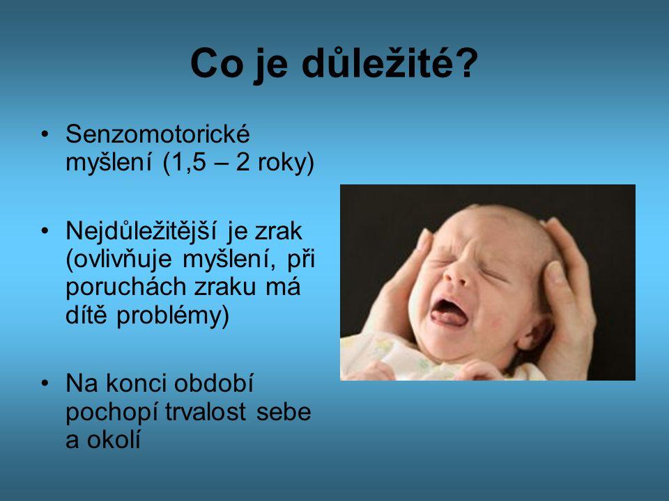 Co je důležité? •Senzomotorické myšlení (1,5 – 2 roky) •Nejdůležitější je zrak (ovlivňuje myšlení, při poruchách zraku má dítě problémy) •Na konci obd