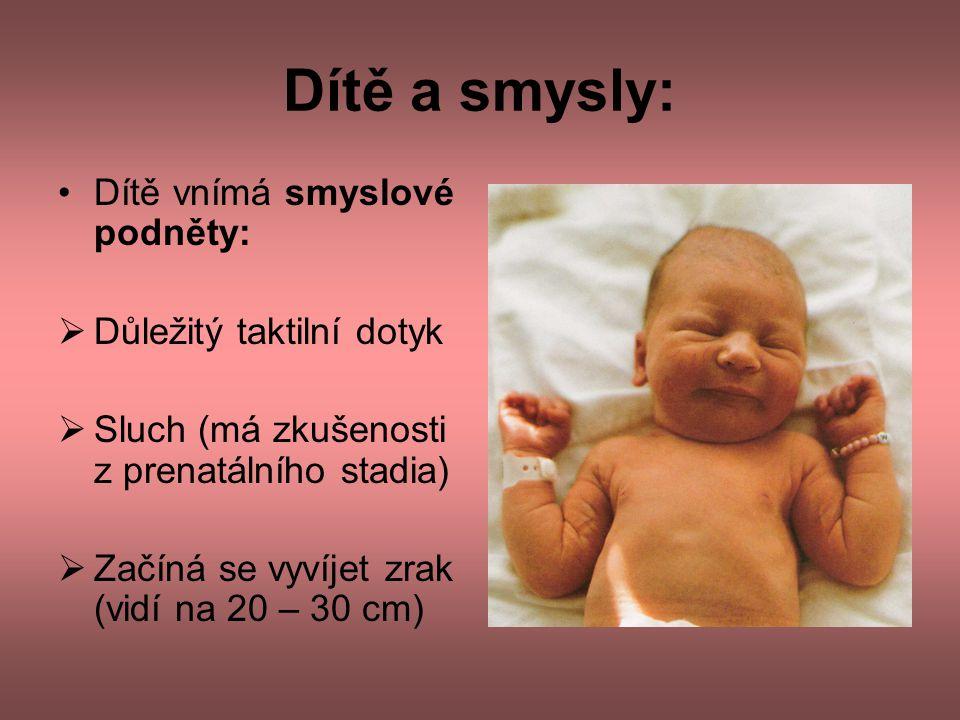 Dítě a smysly: •Dítě vnímá smyslové podněty:  Důležitý taktilní dotyk  Sluch (má zkušenosti z prenatálního stadia)  Začíná se vyvíjet zrak (vidí na