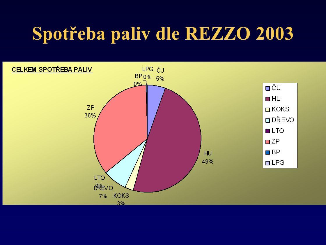 Spotřeba paliv dle REZZO 2003