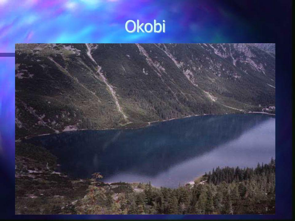 Okobi