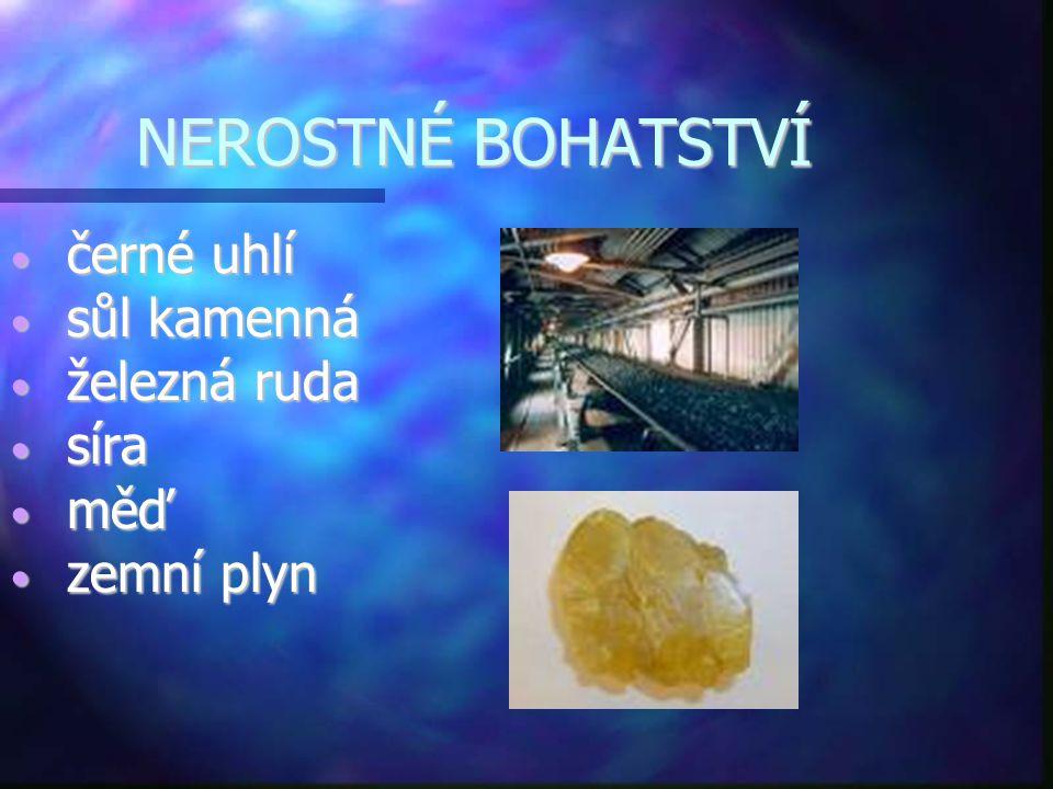 NEROSTNÉ BOHATSTVÍ • černé uhlí • sůl kamenná • železná ruda • síra • měď • zemní plyn