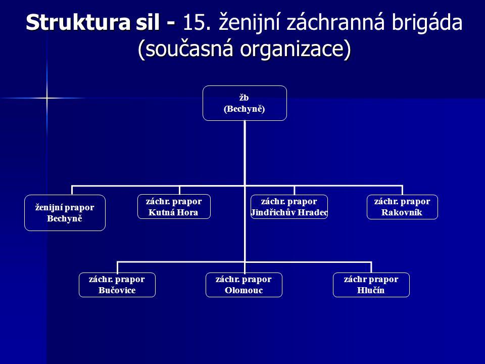 Struktura sil - (současná organizace) Struktura sil - 15.