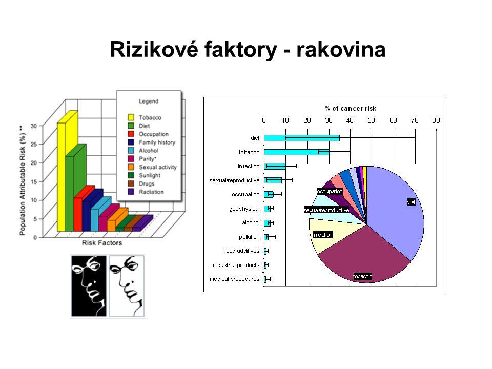 Hodnocení rizik (Risk assessment)  Jaké riziko smrtelné nehody bylo spojeno s řízením auta v ČR v roce 2004.