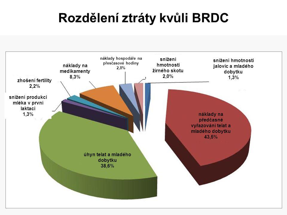Rozdělení ztráty kvůli BRDC snížení produkci mléka v první laktaci 1,3% zhošení fertility 2,2% náklady na medikamenty 8,3% náklady hospodáře na přesča