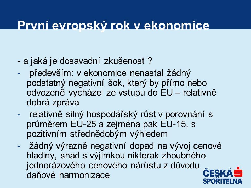 První evropský rok v ekonomice - a jaká je dosavadní zkušenost .