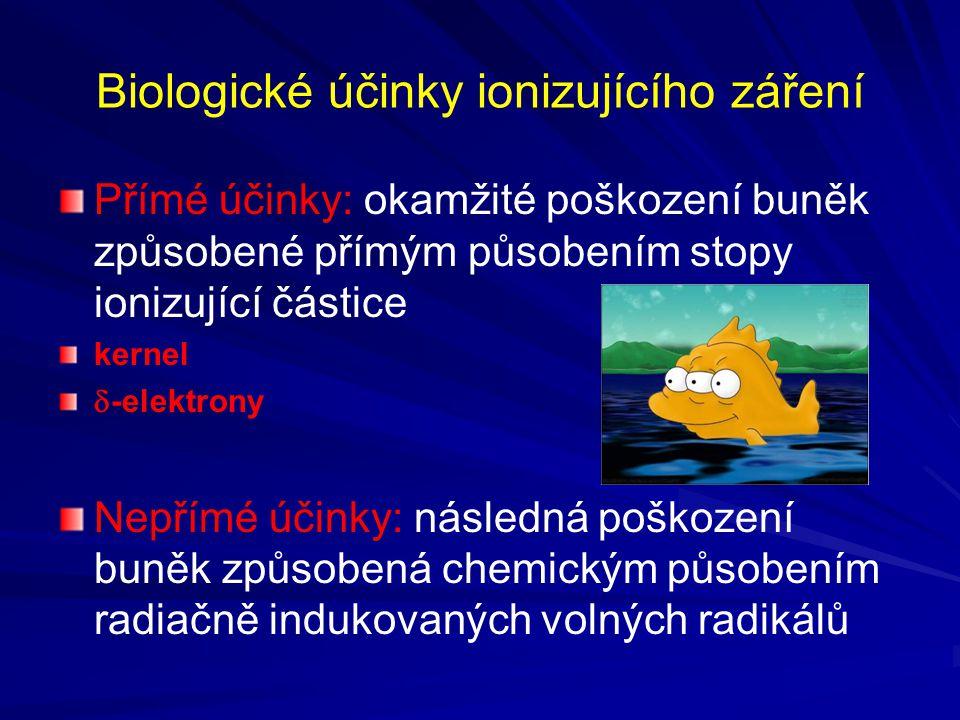 Biologické účinky ionizujícího záření Přímé účinky: okamžité poškození buněk způsobené přímým působením stopy ionizující částice kernel  -elektrony N