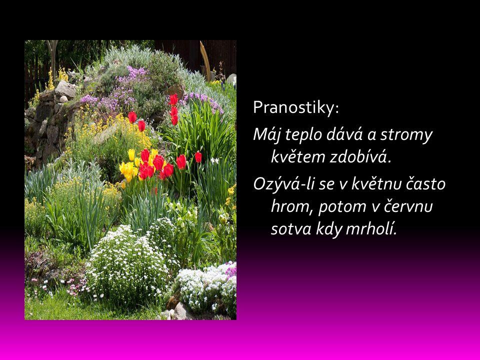 Pranostiky: Máj teplo dává a stromy květem zdobívá. Ozývá-li se v květnu často hrom, potom v červnu sotva kdy mrholí.