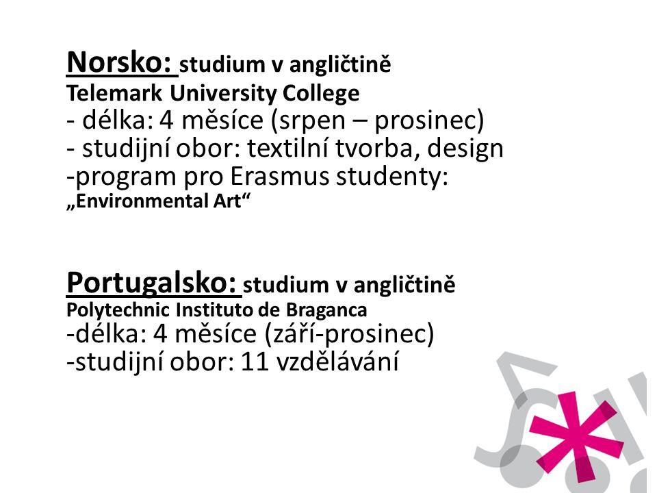 Norsko: studium v angličtině Telemark University College - délka: 4 měsíce (srpen – prosinec) - studijní obor: textilní tvorba, design -program pro Er
