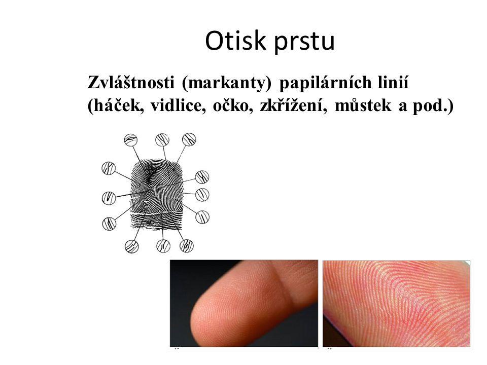 Otisk prstu Zvláštnosti (markanty) papilárních linií (háček, vidlice, očko, zkřížení, můstek a pod.) 17