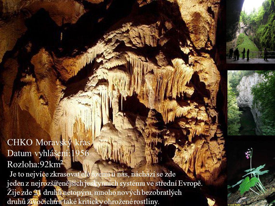 CHKO Moravský kras Datum vyhlášení:1956 Rozloha:92km 2 •Je to nejvíce zkrasovaťelé území u nás, náchází se zde jeden z nejrozšířenějších jeskynních sy