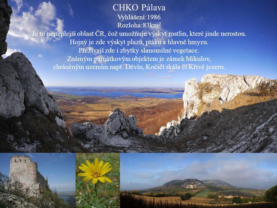CHKO Pálava Vyhlášení:1986 Rozloha:83km 2 Je to nejteplejší oblast ČR, čož umožňuje výskyt rostlin, které jinde nerostou. Hojný je zde výskyt plazů, p