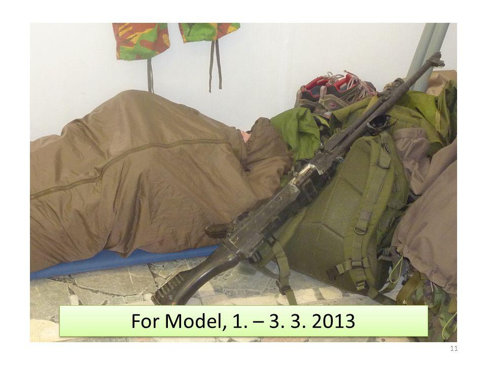 11 For Model, 1. – 3. 3. 2013