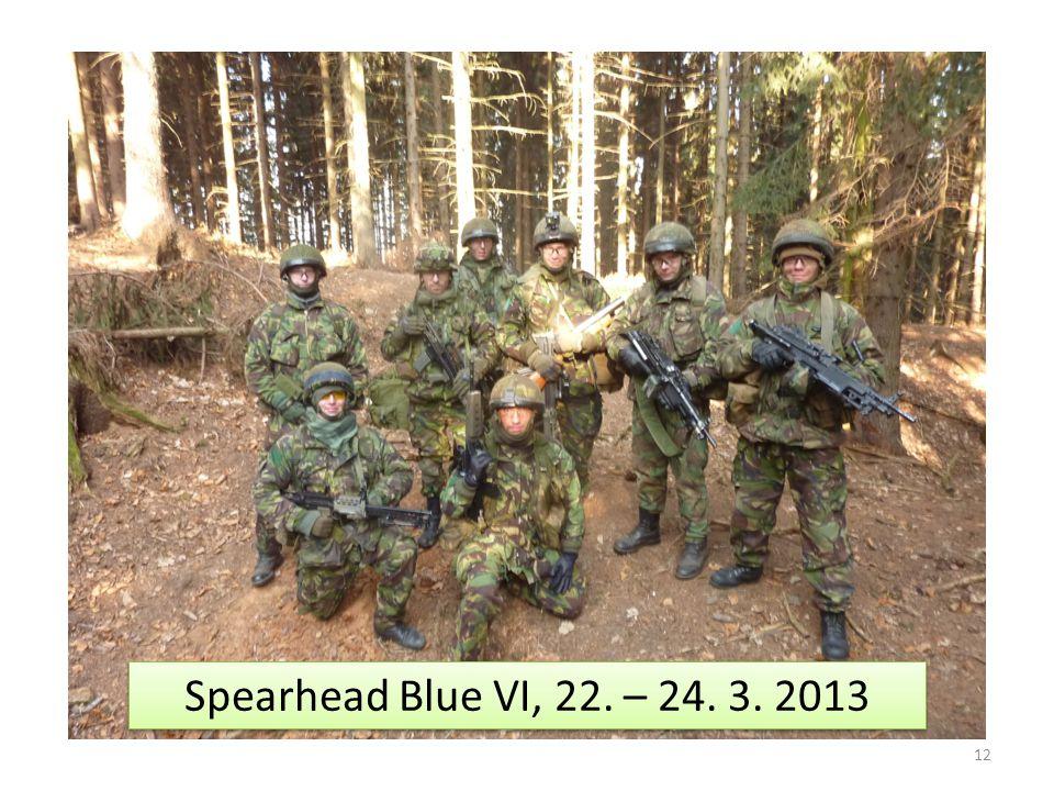 12 Spearhead Blue VI, 22. – 24. 3. 2013