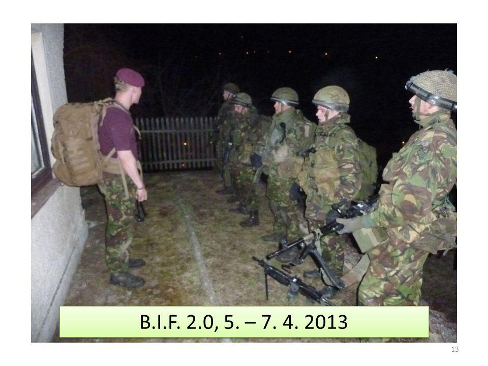 13 B.I.F. 2.0, 5. – 7. 4. 2013