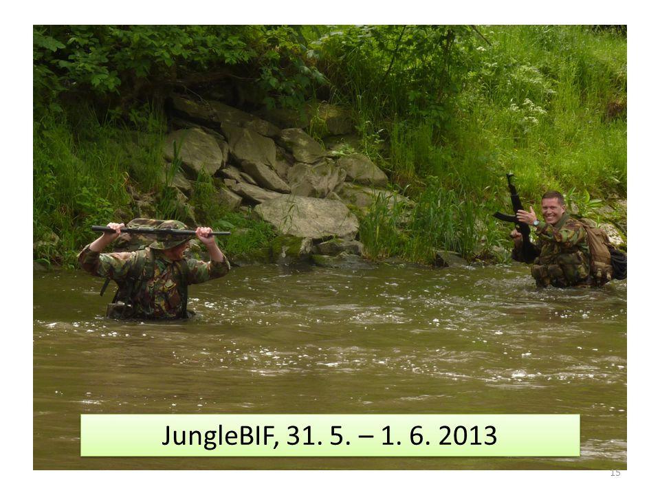 15 JungleBIF, 31. 5. – 1. 6. 2013