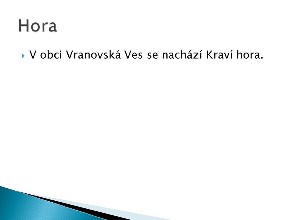 VV obci Vranovská Ves se nachází Kraví hora.