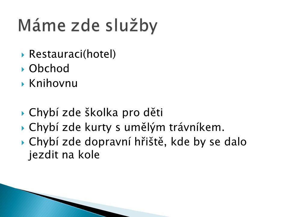 Hotel Hřiště