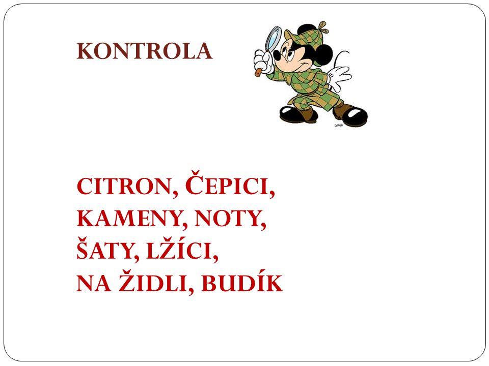 KONTROLA CITRON, Č EPICI, KAMENY, NOTY, ŠATY, LŽÍCI, NA ŽIDLI, BUDÍK
