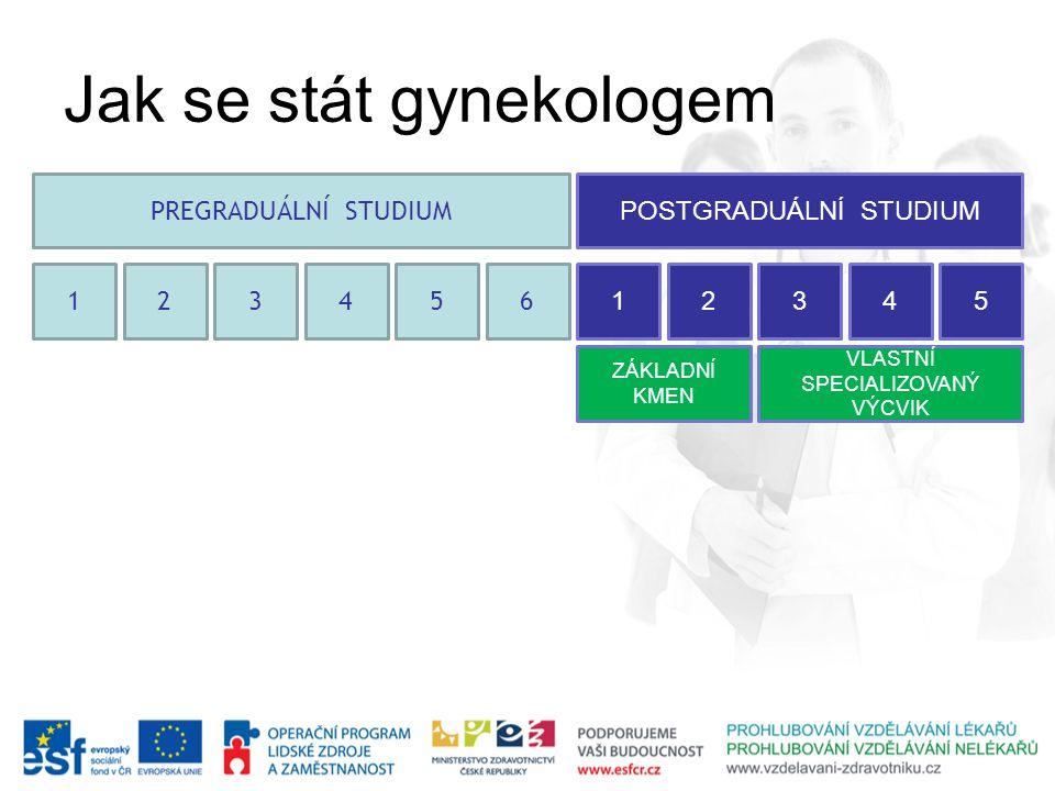 123456 PREGRADUÁLNÍ STUDIUM 12345 POSTGRADUÁLNÍ STUDIUM ZÁKLADNÍ KMEN VLASTNÍ SPECIALIZOVANÝ VÝCVIK Jak se stát gynekologem