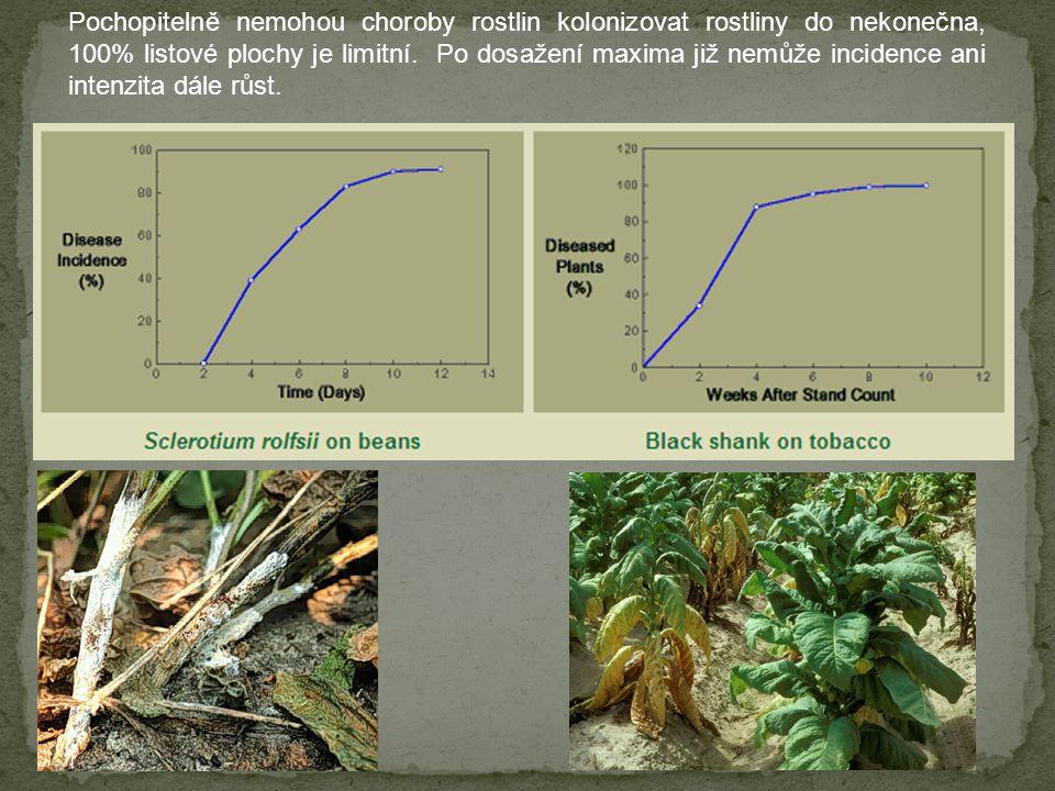 Pochopitelně nemohou choroby rostlin kolonizovat rostliny do nekonečna, 100% listové plochy je limitní. Po dosažení maxima již nemůže incidence ani in