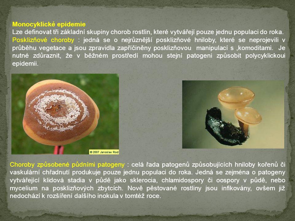 Monocyklické epidemie Lze definovat tři základní skupiny chorob rostlin, které vytvářejí pouze jednu populaci do roka. Posklizňové choroby : jedná se