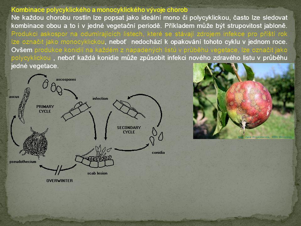 Kombinace polycyklického a monocyklického vývoje chorob Ne každou chorobu rostlin lze popsat jako ideální mono či polycyklickou, často lze sledovat ko