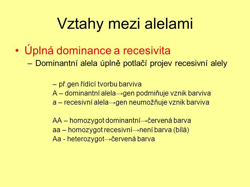 Vztahy mezi alelami •Úplná dominance a recesivita –Dominantní alela úplně potlačí projev recesivní alely –př.gen řídící tvorbu barviva A – dominantní alela→gen podmiňuje vznik barviva a – recesivní alela→gen neumožňuje vznik barviva AA – homozygot dominantní→červená barva aa – homozygot recesivní→není barva (bílá) Aa - heterozygot→červená barva