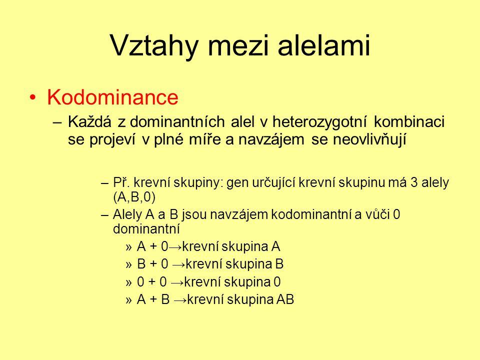 Vztahy mezi alelami •Kodominance –Každá z dominantních alel v heterozygotní kombinaci se projeví v plné míře a navzájem se neovlivňují –Př.