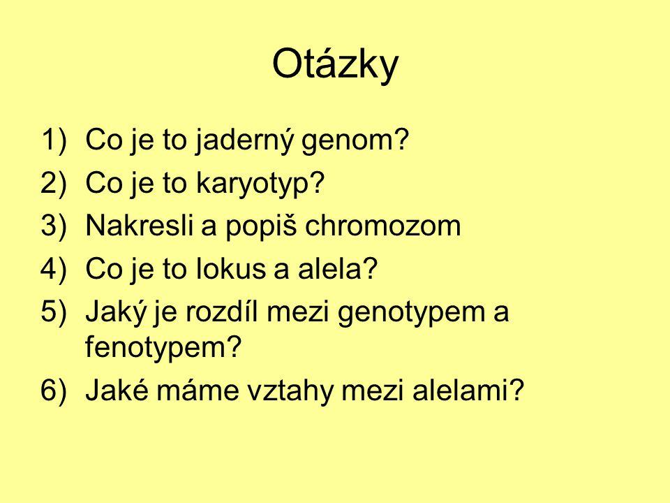 Otázky 1)Co je to jaderný genom.2)Co je to karyotyp.