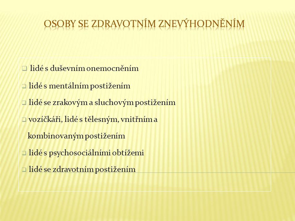 ÚČASTNÍCI PRACOVNÍ SKUPINY  Anima Opava  FOKUS – Opava, o.s.