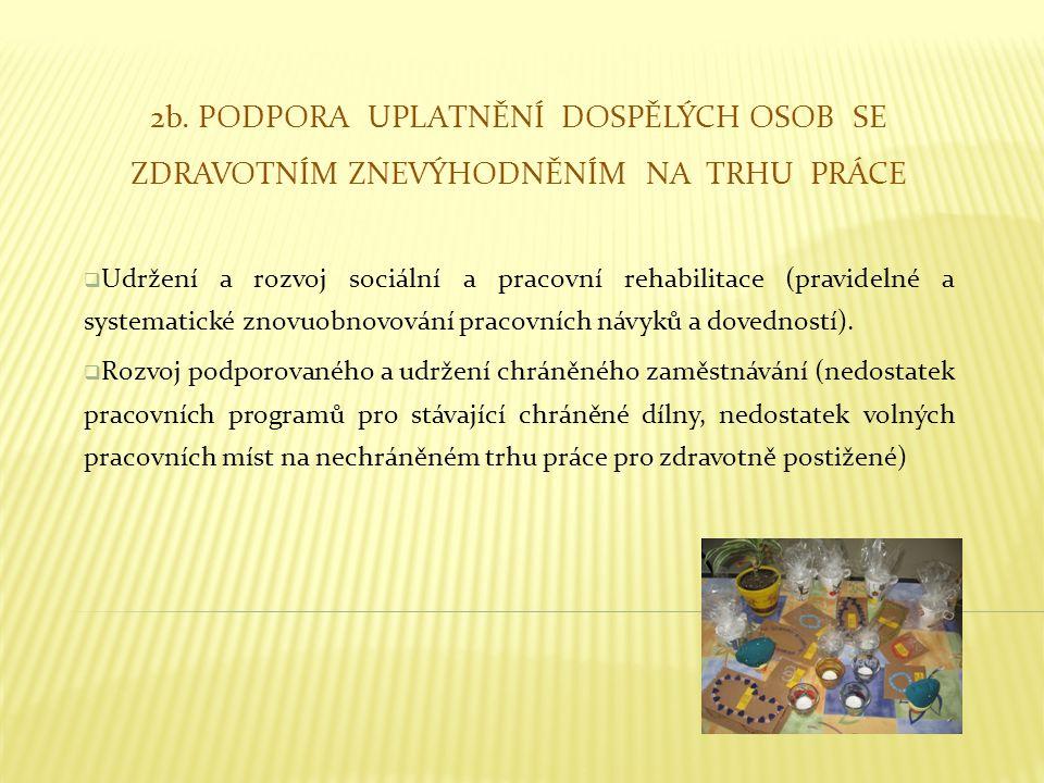 2b. PODPORA UPLATNĚNÍ DOSPĚLÝCH OSOB SE ZDRAVOTNÍM ZNEVÝHODNĚNÍM NA TRHU PRÁCE  Udržení a rozvoj sociální a pracovní rehabilitace (pravidelné a syste