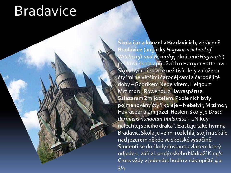 Škola čar a kouzel v Bradavicích Škola byla před více než tisíci lety založena čtyřmi největšími čaroději a čarodějkami té doby: Godrikem Nebelvírem,Helgou z Mrzimoru,Rowenou z Havraspáru a Salazarem Zmijozelem.