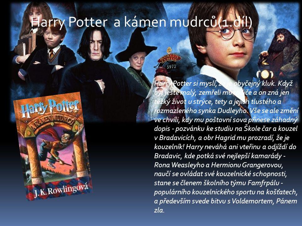 Harry Potter si myslí, že je obyčejný kluk. Když byl ještě malý, zemřeli mu rodiče a on zná jen těžký život u strýce, tety a jejich tlustého a rozmazl