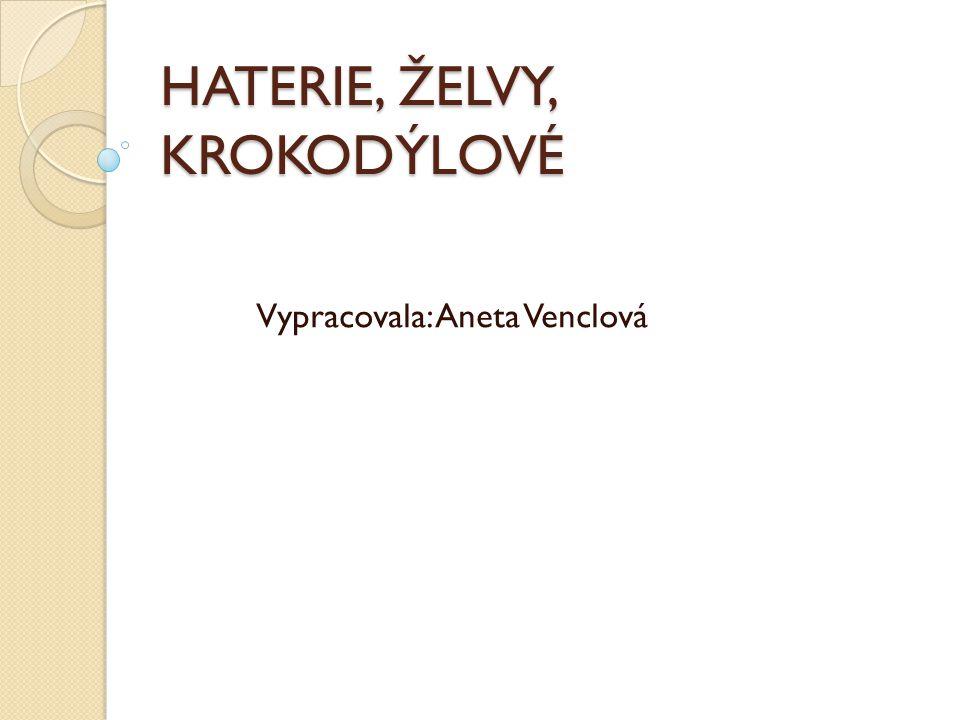 HATERIE, ŽELVY, KROKODÝLOVÉ Vypracovala: Aneta Venclová