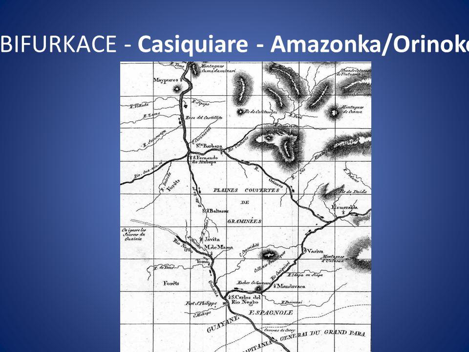BIFURKACE - Casiquiare - Amazonka/Orinoko