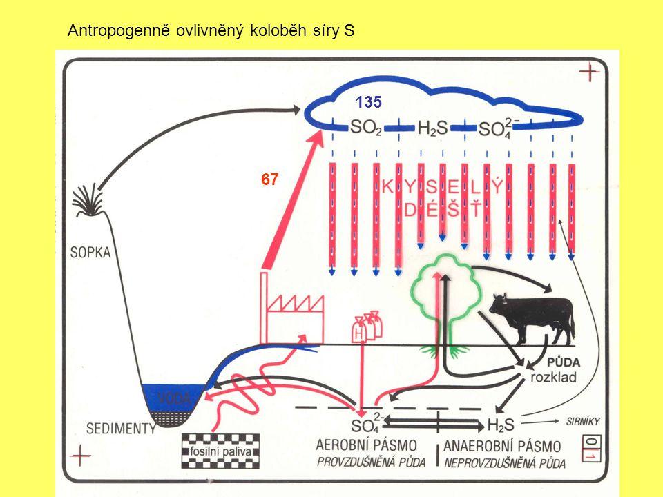 Antropogenně ovlivněný koloběh síry S 135 67