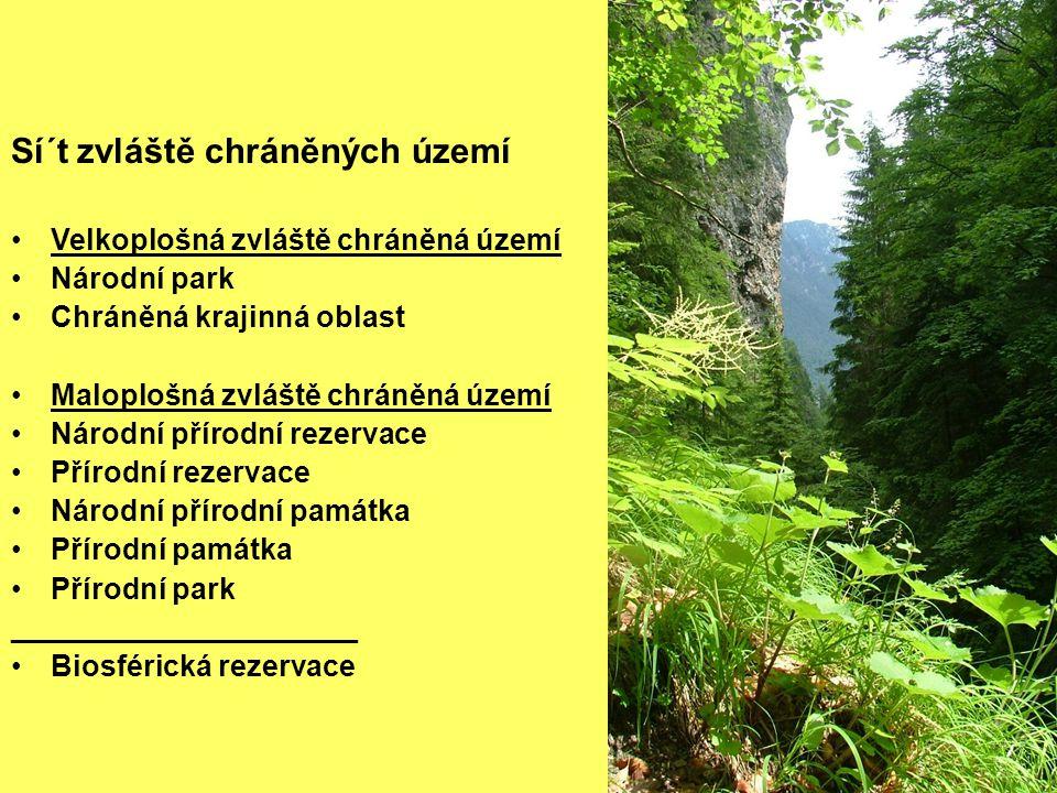 Sí´t zvláště chráněných území •Velkoplošná zvláště chráněná území •Národní park •Chráněná krajinná oblast •Maloplošná zvláště chráněná území •Národní přírodní rezervace •Přírodní rezervace •Národní přírodní památka •Přírodní památka •Přírodní park _____________________ •Biosférická rezervace