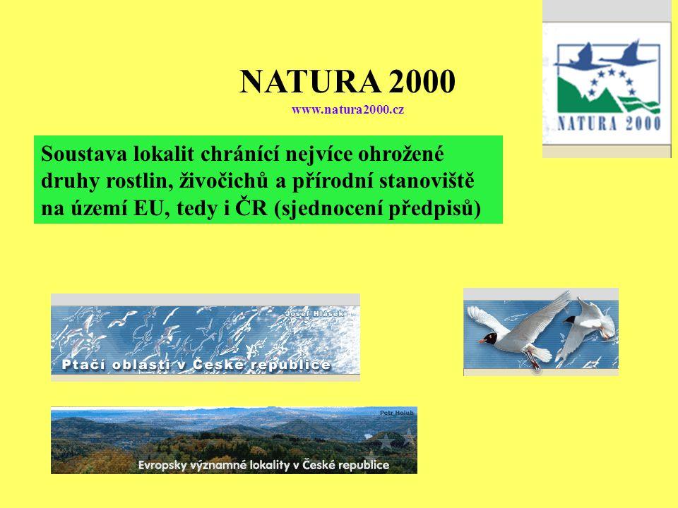 NATURA 2000 www.natura2000.cz Soustava lokalit chránící nejvíce ohrožené druhy rostlin, živočichů a přírodní stanoviště na území EU, tedy i ČR (sjednocení předpisů)