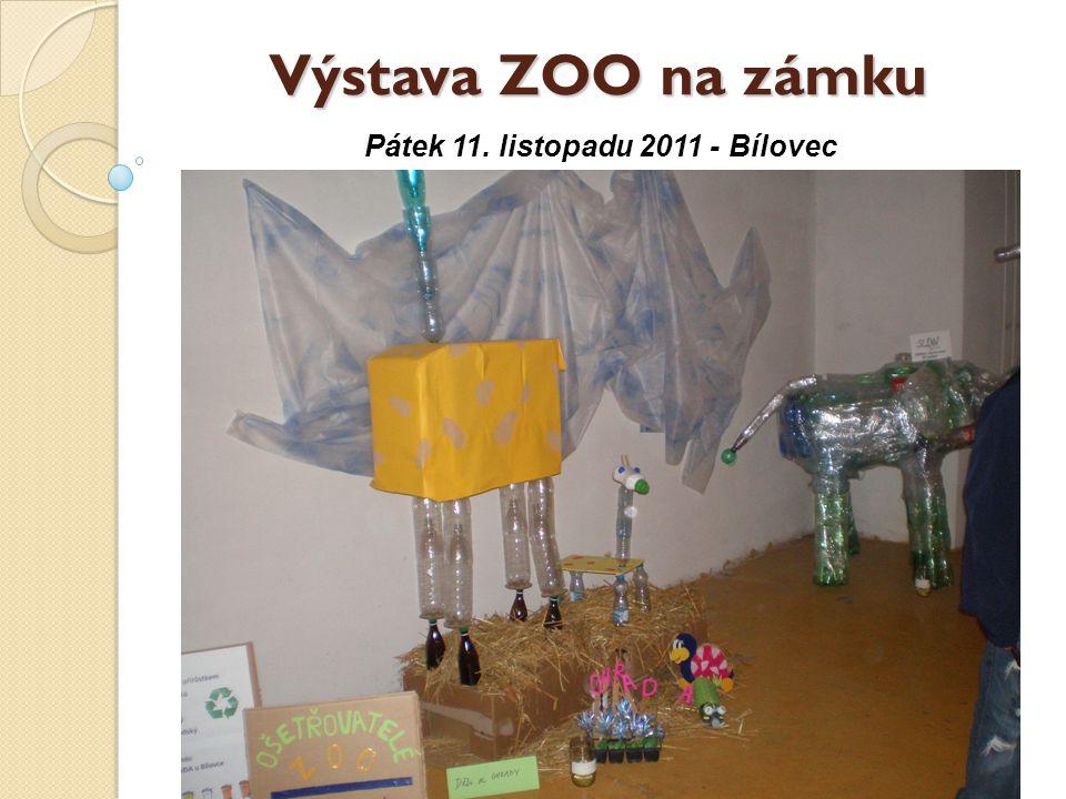 Výstava ZOO na zámku Pátek 11. listopadu 2011 - Bílovec