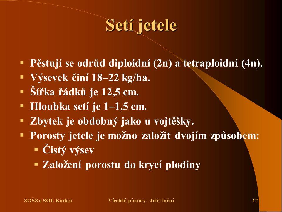 SOŠS a SOU KadaňVíceleté pícniny - Jetel luční12 Setí jetele  Pěstují se odrůd diploidní (2n) a tetraploidní (4n).  Výsevek činí 18–22 kg/ha.  Šířk