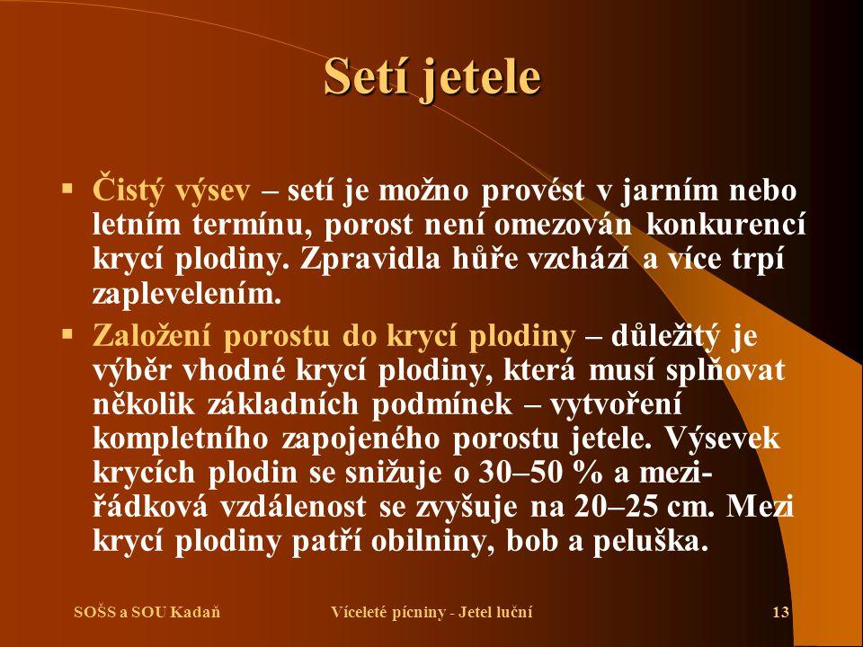 SOŠS a SOU KadaňVíceleté pícniny - Jetel luční13 Setí jetele  Čistý výsev – setí je možno provést v jarním nebo letním termínu, porost není omezován konkurencí krycí plodiny.