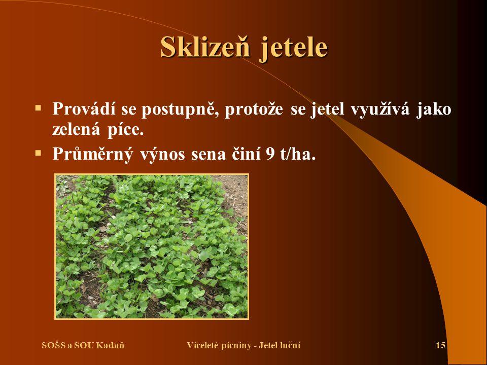 SOŠS a SOU KadaňVíceleté pícniny - Jetel luční15 Sklizeň jetele  Provádí se postupně, protože se jetel využívá jako zelená píce.  Průměrný výnos sen