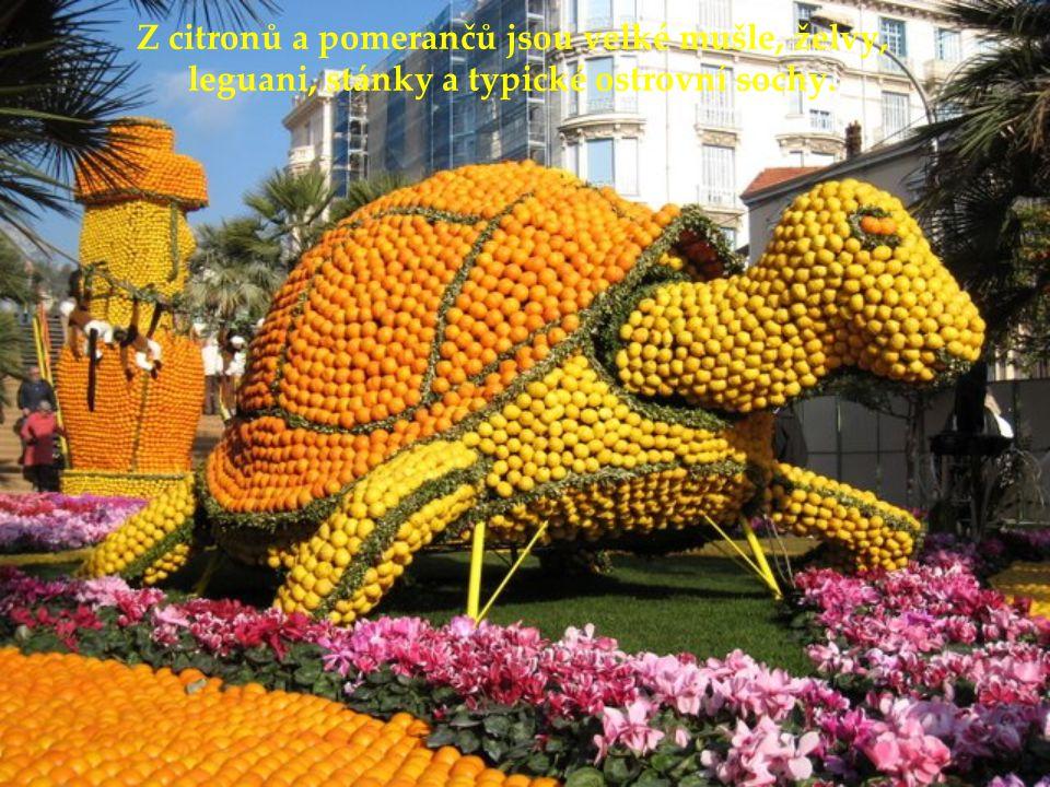 V roce 2008 bylo tématem festivalu ostrovy na světě