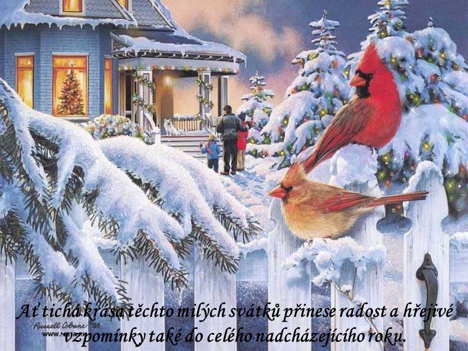 Ať tichá krása těchto milých svátků přinese radost a hřejivé vzpomínky také do celého nadcházejícího roku.